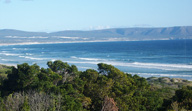 hermanus-beach